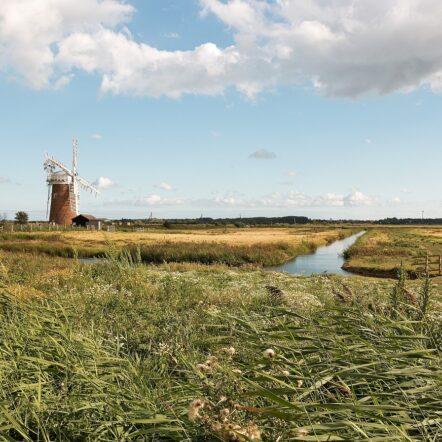 Windmill - Norfolk green space